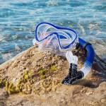 海水浴がもっと楽しくなるシュノーケルセット新発売!
