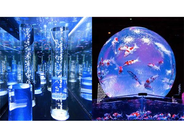 日本初!2000匹の魚を展示するカフェ型水族館が越谷にOPEN