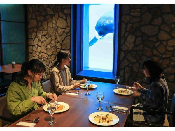 週末は水族館女子会!鴨川シーワールドの女性限定プラン