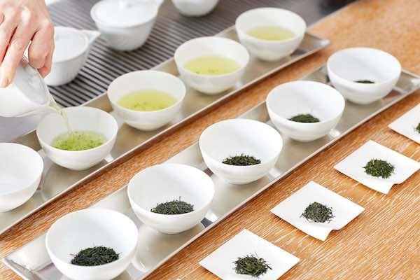"""""""煎茶の飲み比べ""""も!「山本山」のお茶教室で煎茶の奥深さを体感しよう"""