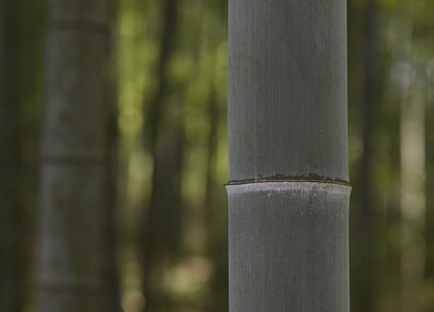 自然素材の再発見!無印良品の企画展「Found MUJI 竹」開催
