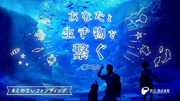 生きものと繋がる!新江ノ島水族館「えのすいファンディング」開始