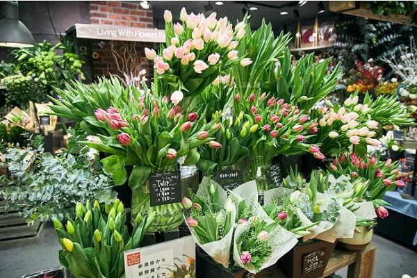 青山フラワーマーケットが新幹線輸送の新鮮なチューリップを東京駅で販売!