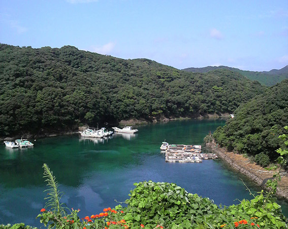 安全安心にちょっと島旅!長崎県新上五島町「かみごとう島旅 観光周遊バス」運行再開