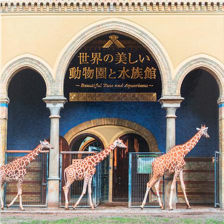 生きものたちが暮らす、驚きと癒しの空間を収録!「世界の美しい動物園と水族館」発売