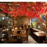 都内で気軽に紅葉狩り! 紅葉が見られる大人レストランで秋満喫!!