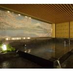 新宿歌舞伎町に誕生!都心最大級のプレミアム・スパ「テルマー湯」グランドオープン